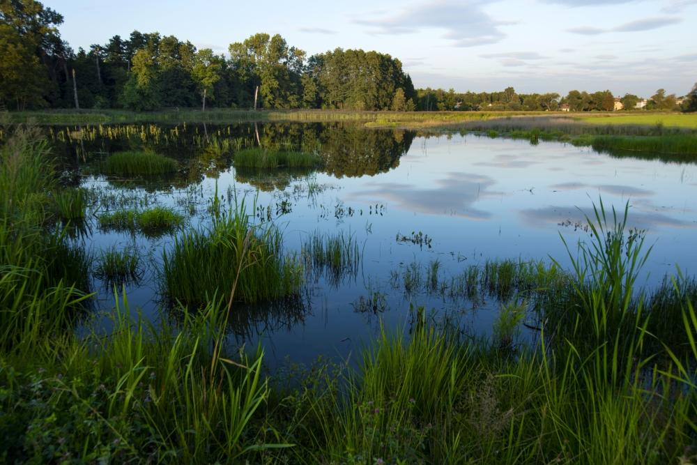 Semín – optimalizace vodního režimu v lokalitě Cháravka