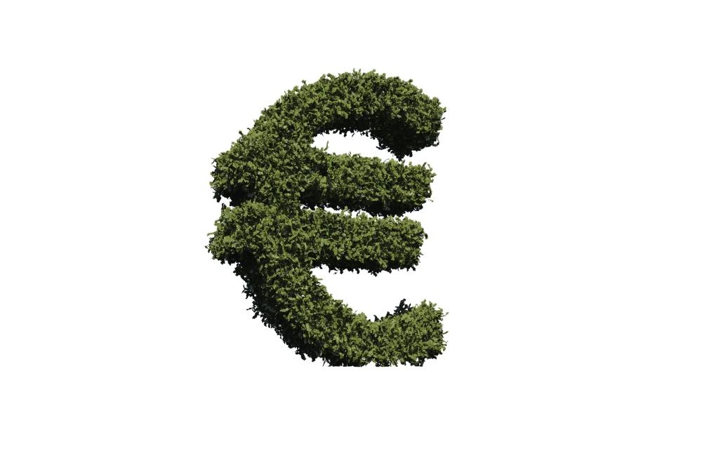 Znak pro euro ze zelených listů