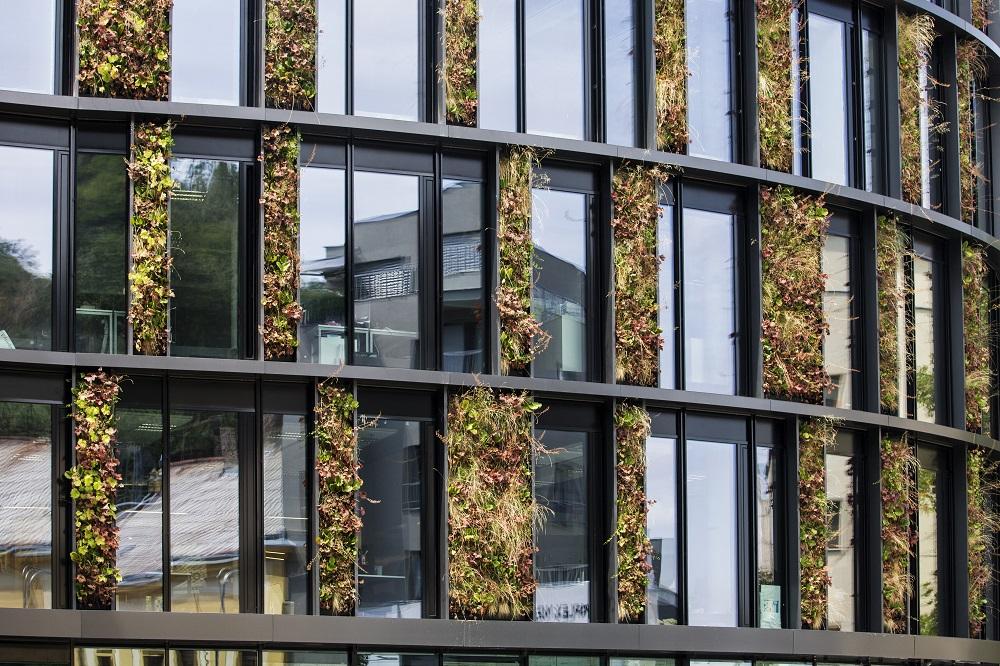 Zelena a modra ifrastruktura ve meste (2)